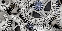 Effectively manage change