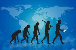Change Should be an Evolution, Not a Revolution