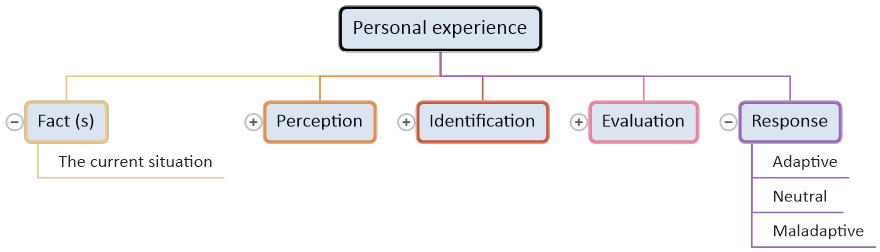 Personal Expierence - Facts, Perception, Identification, Evaluation, Response